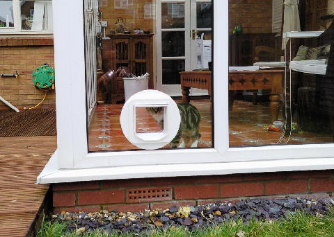 Cat Flap Fitting Through Walls Doors Upvc Panels And Double