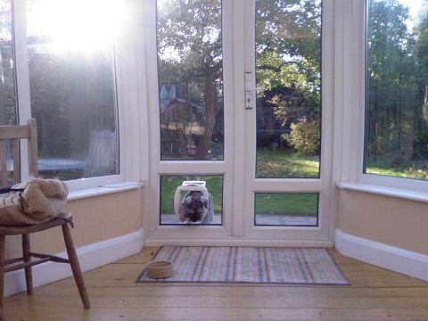 We Fit Cat Flaps And Dog Doors In Hampshire