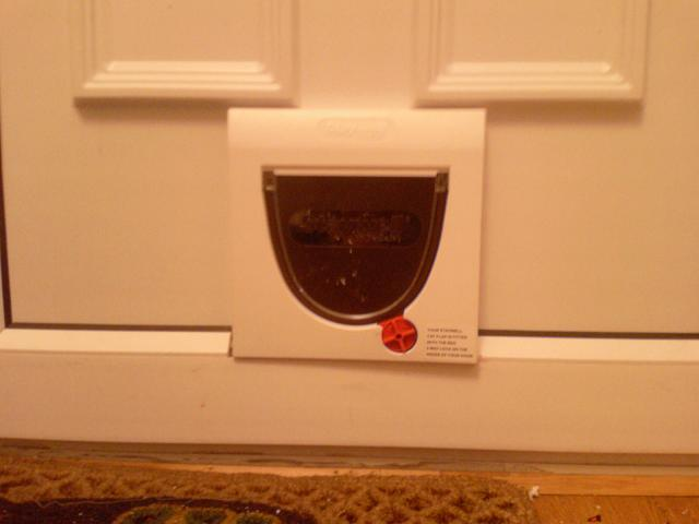 Cat Flap in a UPVC panel